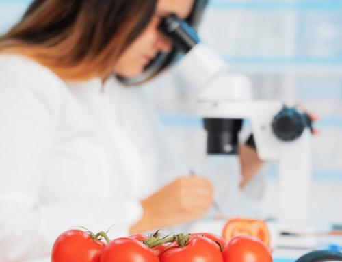 Princípios de Gestão da Segurança de Alimentos